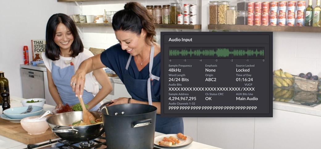Audio Input Status