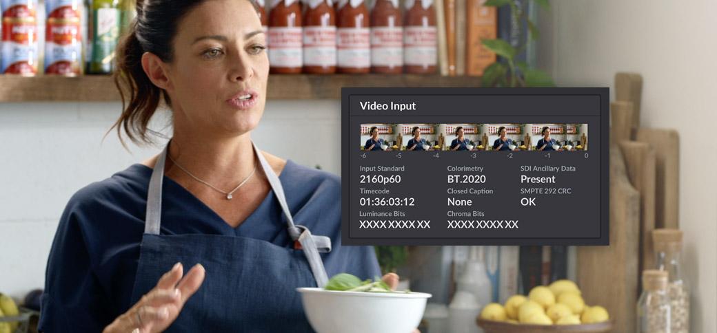 Video Input Status