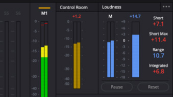 Enhanced Loudness Monitoring